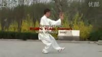 【36】为大师名家齐喝采《传统杨式太极拳》桑卫东演示