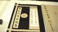 张裕钊南宫碑书法技法-陈启壮(第1集)