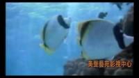 林俊卿咽音练声法与声乐教学 歌唱 美声唱法:心向海洋