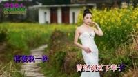 许多年以后(KTV伴唱版) - 赵鑫