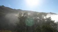 My Light (雾、光与云,美国加洲硅谷),自制9分钟情景影片