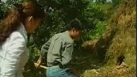 """【推荐】养鸡的""""土""""方法【农业养殖_畜牧养殖_养殖环境清洁_养殖视频_除氨除臭清洁吧】"""