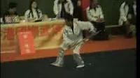 【太极拳术 太極鞭杆术 又一套简单实用体用兼備的《太极短棍 》士的术  】表演〔2007年香港武术節