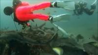 2015.06日本看鲨鱼