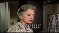 《变态者电影指南》03《鸟》(1963)