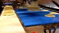 荷兰BPA自动化集团 / 一级包装 / 视觉引导机械手多层提取