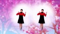 河北青青广场舞《女人没有错》