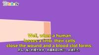 为什么人类身体部位不能再生