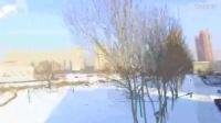 无人机炸机视频 无人机飞行中撞树
