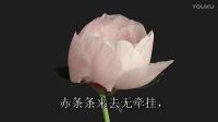 唯美音乐(2)鲜花盛开的时候
