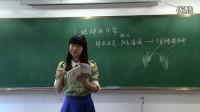 小学语文模拟教学《蟋蟀的住宅》小学语文教师招聘考生模拟课堂试讲教学