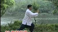 B傅清泉传统杨式太极拳85式教学B,有文字展示,讲的详细具体,最全的教学资料。