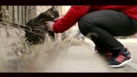 好莱坞婚礼-呼吁关爱流浪动物公益宣传片