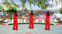 卢清秀广场舞《语花蝶》编舞:顺英