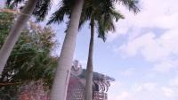 Fedde Le Grand -  Festival Miami 2017 现场