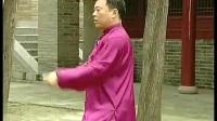 张东武 陈式太极拳老架一路74式 教学视频