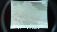 脉冲星XQ50热像仪实拍视频测距和八种颜色成像150米看麻雀