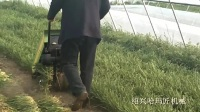 哈玛匠机械 推荐的大棚韭菜收割机系列产品 快速高效省时省力