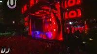經典重温 Avicii - Titanium UMF Live