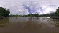 CI 环保VR 正片- 热带雨林保护 环保VR大制作