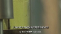 【Co-Impact Sourcing】小豆蔻Cardamon-CN+