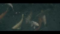 Alan Walker feat. K-391 - Ignite (Instrumental)