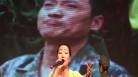 2017年4月20日纪念对越自卫还击胜利文艺晚会.mpg