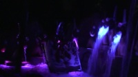 十一、上海迪士尼乐园《晶彩奇航》夜景.mpg