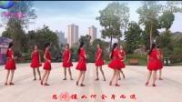 双人对跳广场舞《拥抱你离去》正面演示附分解教学_高清.mp4