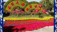 117,16年春夏天津各公园大型美丽花坛风景,歌曲:心中的桃花源 视频相册