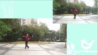 刘咪舞蹈课堂;姿态练习(正反面)