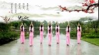 张春丽广场舞 一枝梅 正背表演