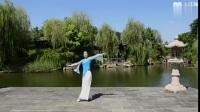张春丽广场舞 渡风 背面展示与动作分解
