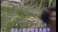 一代二仙女琪琪-兰花草