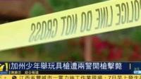 美国加州一名少年举玩具枪遭警员开枪击毙