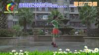 杨丽萍广场舞 想啊 原创16步入门舞蹈