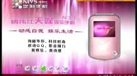 2010.11.18NIVS纳伟仕定制手机广告