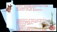 圣经【创世纪第8章】