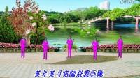 茶姐广场舞2017年最新广场舞
