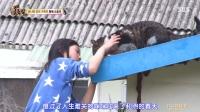 [TSKS]动物农场.E814.170507.中字