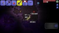 泰拉瑞亚手机版:第四集大战长屌怪翔怪
