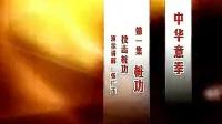 意拳桩功教学(张广玉)_标清