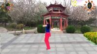 阳光美梅广场舞-原创 32步【人生不能没有爱】正背面附动作分解