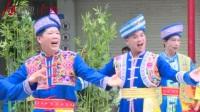 上林县生态旅游养生节开幕式巡街表演