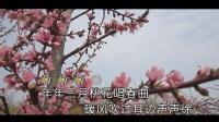 邱宏--桃花曲