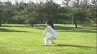 42式太极拳音乐《人间仙境》演练:邱慧芳