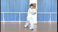 赵幼斌大师之子掌门师兄赵亮演练杨式太极拳传统套路85式(背面)