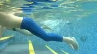 蛙泳轻松入门迅速提高 金牌游泳教学视频_标清