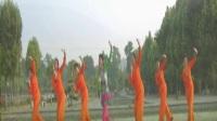 南阳和平广场舞系列--唱起我的南泥湾(红枫团队版)