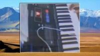 03 青藏高原(雅马哈)弦乐小天使电子琴演奏